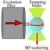 Observation of Whispering Gallery Modes in Elastic Light Scattering from Microdroplets Optically Trapped in a Microfluidic Channel